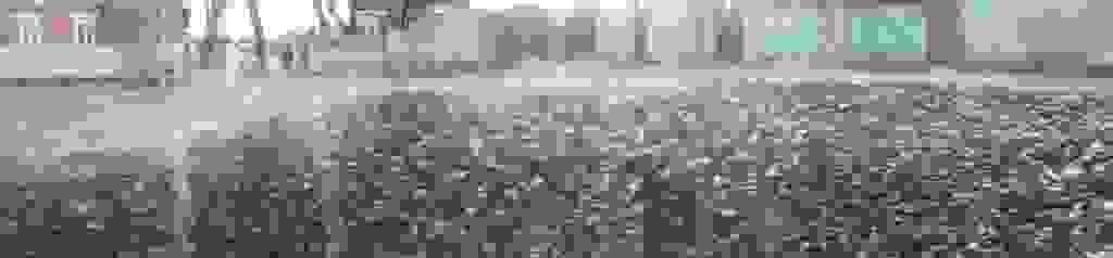 ObscureLandPt21.jpg